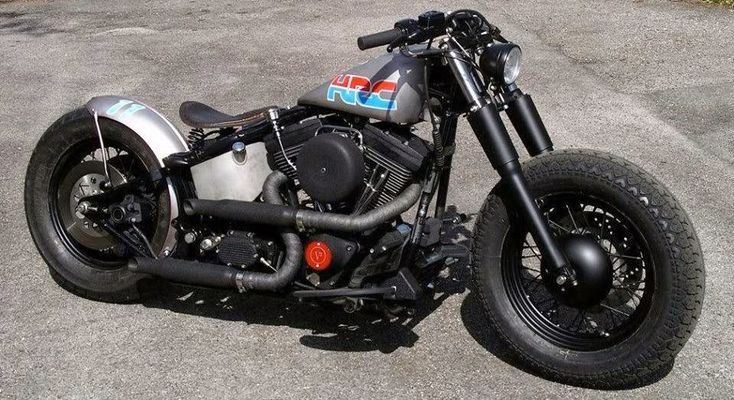 Harley Brothers: Cool Softail Bobber