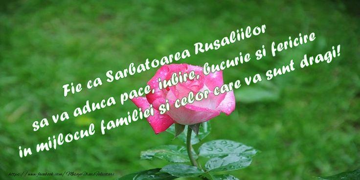 Fie ca Sarbatoarea Rusaliilor sa va aduca pace, iubire si fericire in mijlocul familiei si celor care va sunt dragi!