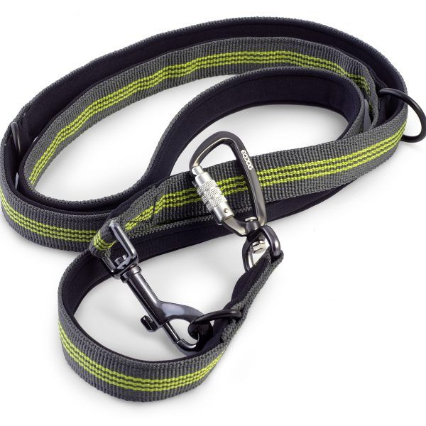EQDOG – Pro leash | Dogship