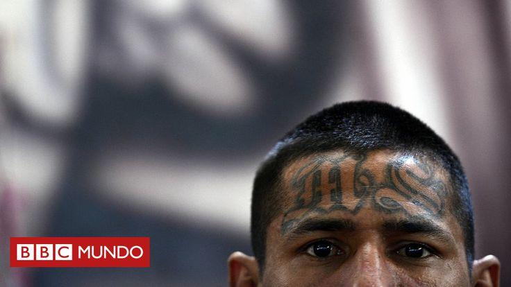 """""""La violencia no es lo que define a las pandillas"""": la experiencia única de Juan Martínez d'Aubuisson, el antropólogo que vivió un año con la Mara Salvatrucha en El Salvador - BBC Mundo"""