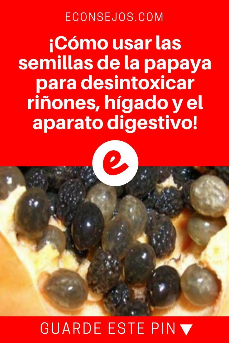 Semillas de papaya beneficios | ¡Cómo usar las semillas de la papaya para desintoxicar riñones, hígado y el aparato digestivo!  | La mayoría de personas tiran las semillas de la papaya a la basura, sin saber el maravilloso remedio que es para los riñones, hígado y el aparato digestivo. Sepa cómo usarlas