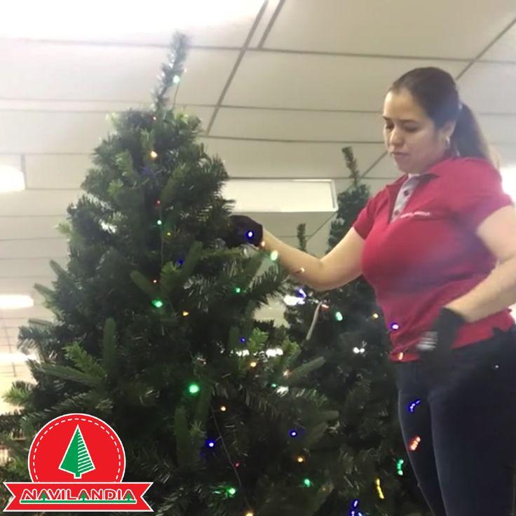 ¿Cómo ponerle las las extensiones de luces de Navidad a tu árbol? Conoce una de los técnicas que recomendamos en nuestro canal de YouTube en https://www.youtube.com/watch?v=WB97mDwprmo&feature=youtu.be&utm_content=buffer823e8&utm_medium=social&utm_source=pinterest.com&utm_campaign=buffer.  #ArbolesDeNavidadCali #ArbolesDeNavidadMedellin #ArbolesDeNavidadColombia
