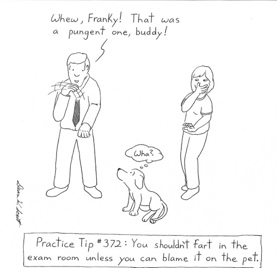 If you knew what was wrong, why did you waste the time ...  Cartoon Vet Tech