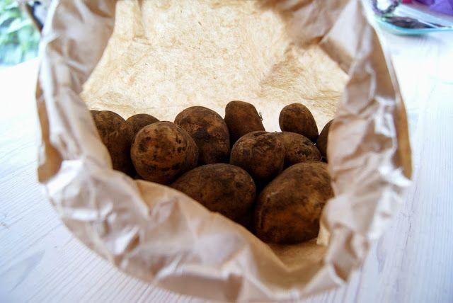 Skarntyden og lupinen: Nye danske kartofler til jul