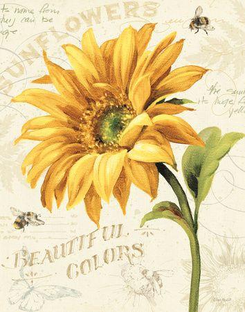 Under the Sun II  Art Print  by Lisa Audit