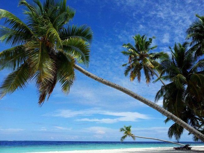 Filetheyo, Maldiverna #Maldives #Maldiverna  #Filetheyo #Beach #Strand #paradis #paradise #vacker #beautiful #vacation #semester #ocean #hav #island #ö