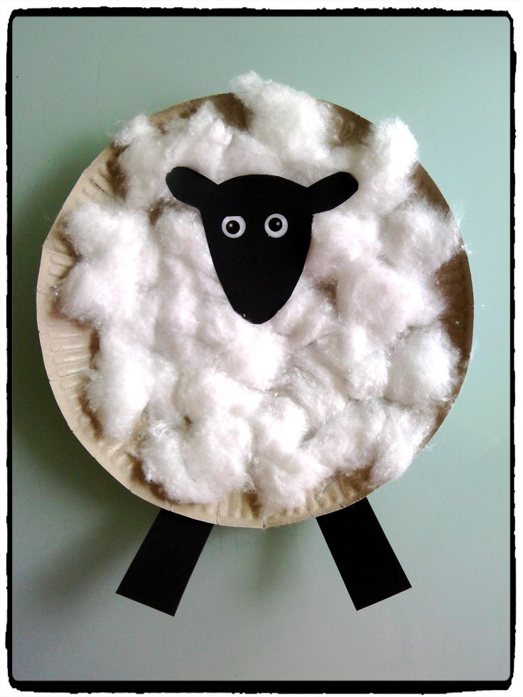 shaun le mouton, assiette en carton, collage de coton, animaux de la ferme