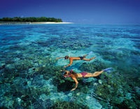 Plongée avec masque et tuba dans la mer de Green Island