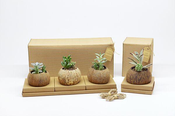 Au Naturel   Ecological Garden Plant Packaging https://www.behance.net/gallery/31372617/Au-Naturel-Ecological-Garden