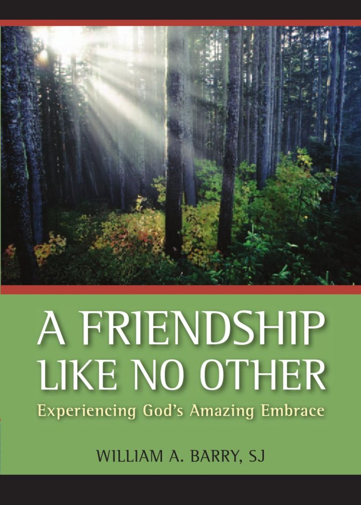 A Friendship Like No Other  Grounded in biblical tradition but with a clear focus on Ignatian spirituality, A Friendship Like No Other offers a fresh approach to becoming a friend of God. Eschewing the idea that God is a distant, solitary figure to be feared, renonwed spiritual director William A. Barry, SJ, provides us with all the tools needed to become a friend of God.