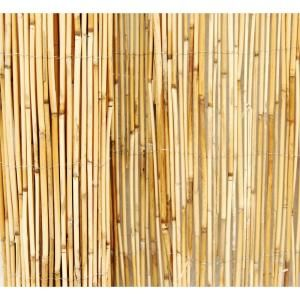 Best 25 Reed Fencing Ideas On Pinterest Tropical