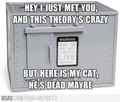 Call me maybe, Schrodinger: Cats Humor, Nerd Jokes, Shrodingers Cat, Lol Nerd Humor, Schrodingers Cat, Hell Pick, Good Jokes, The Big Bang Theory