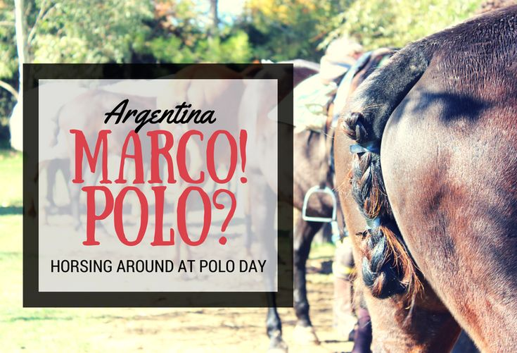 Visiting Argentina, the home of polo? Why just watch it when you can PLAY it... after unlimited wine. Read all about the crazy experience here. Think hockey on horses :) (scheduled via http://www.tailwindapp.com?utm_source=pinterest&utm_medium=twpin&utm_content=post167476759&utm_campaign=scheduler_attribution)