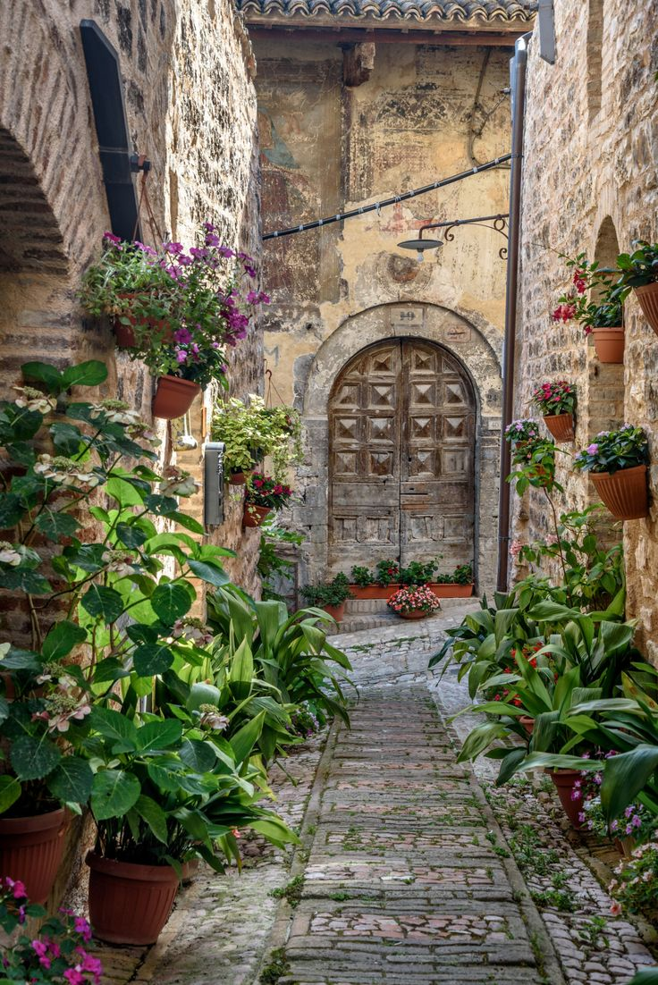 Spello, Umbria, Italy (by Iggi Falcon)