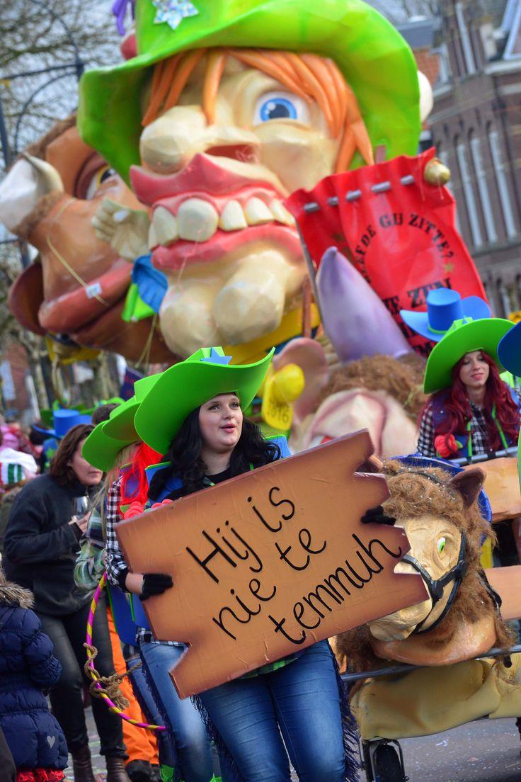 Op carnavalszondag 7 februari trok de grote optocht door Etten-Leur. Het was weer een prachtige stoet! (3)