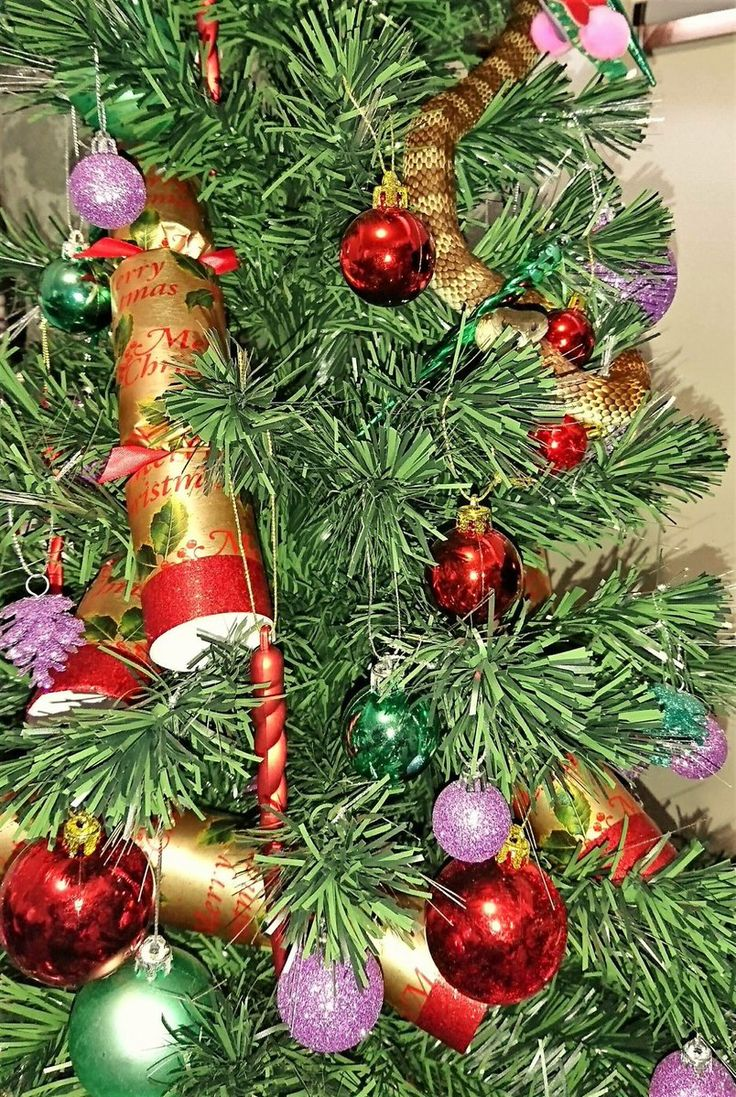 213 best Christmas Tree, Oh Christmas Tree images on Pinterest ...