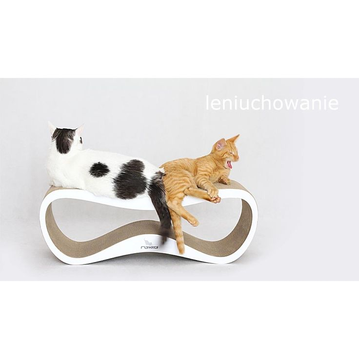myKotty LUI White Cat Scratcher Lounger - Cat Scratchers - Cat Accessories