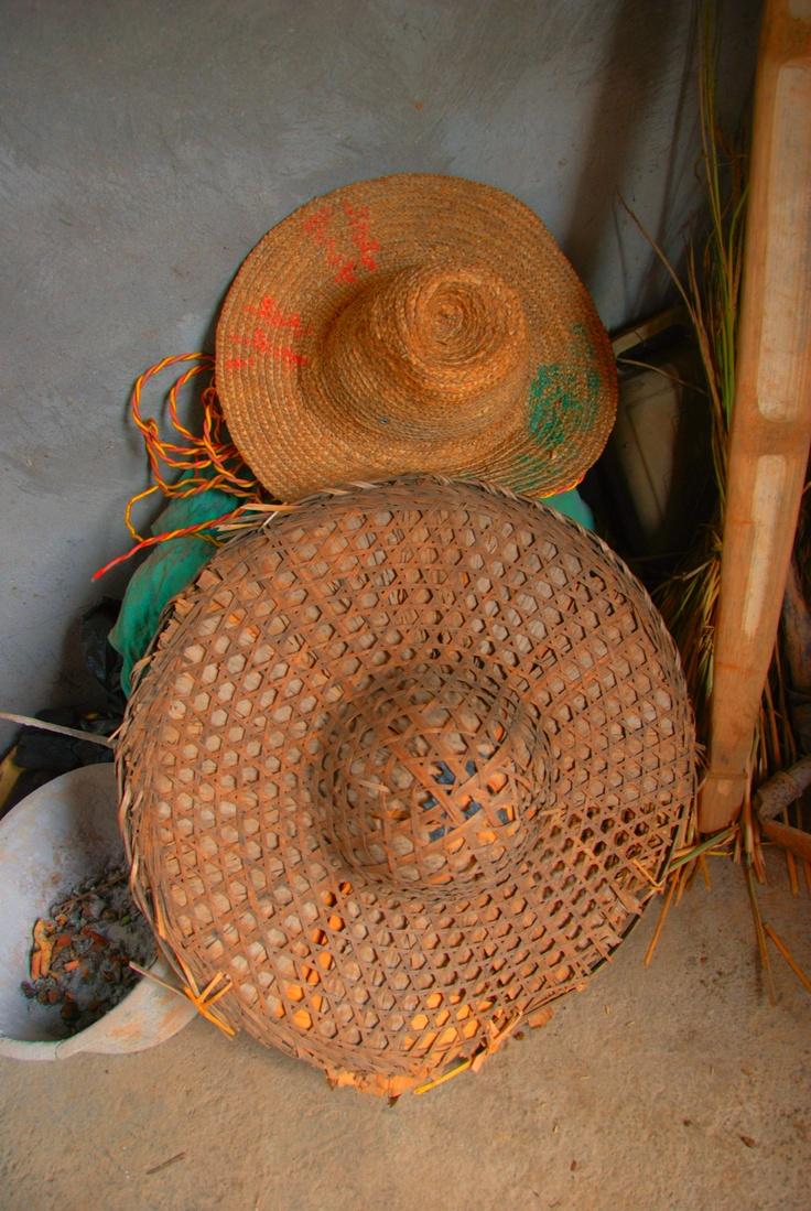 Topi Petani, China