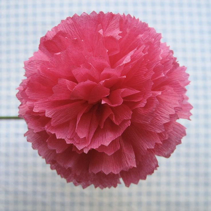 Crepe-Paper-Flowers-16