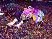"New artwork for sale! - "" Shetland Pony Horse Nap Shetland  by PixBreak Art "" - http://ift.tt/2u4X2xg"