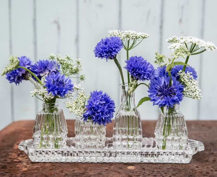 June.  Blue cornflowers in a vintage pressed glass cruet set by Tuckshop Flowers, Birmingham.  Photo courtesy of Denise Wilson.