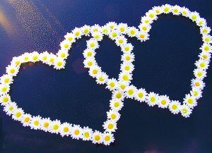 картинки два сердца бьются вместе: 11 тыс изображений найдено в Яндекс.Картинках