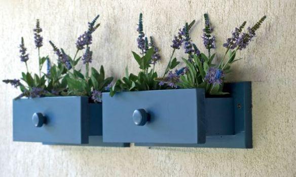 plantas en cajones #reciclar