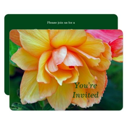 Begonia 58 Any Event Invitation  $2.21  by prairielist  - cyo customize personalize unique diy idea