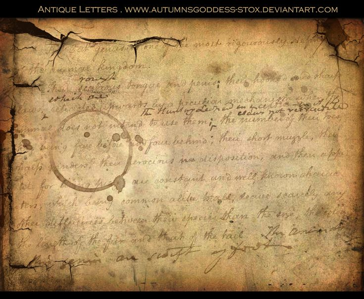 Beautiful, wished we still wrote letters like this! so meaningful!!