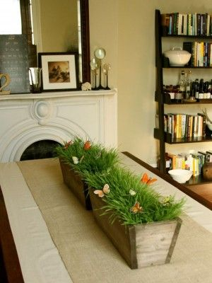 how to grow wheat grass #easter