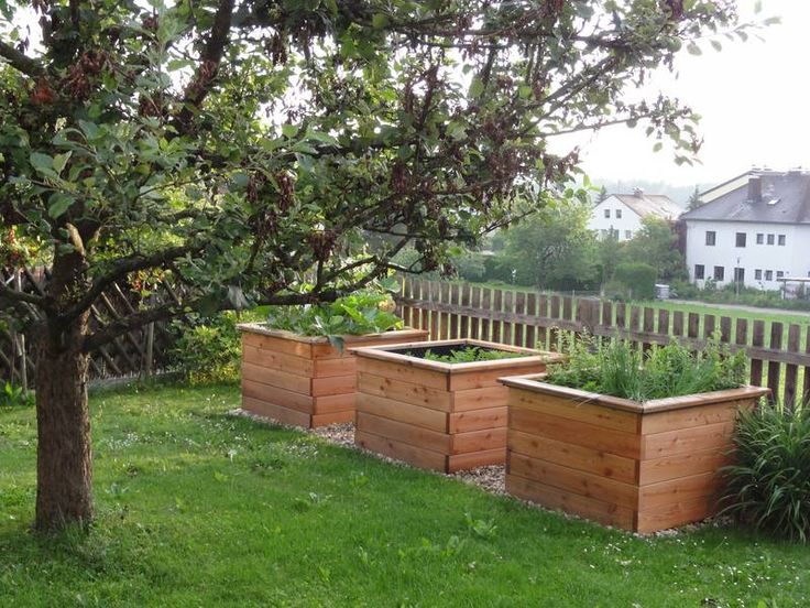 Raised Garden Bed / Hochbeet Aufbau: Keep in mind when doing property line - separate out non compatible plants this way