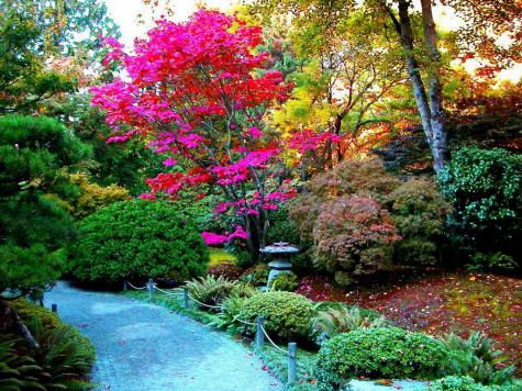 Paisagismo no Jardim