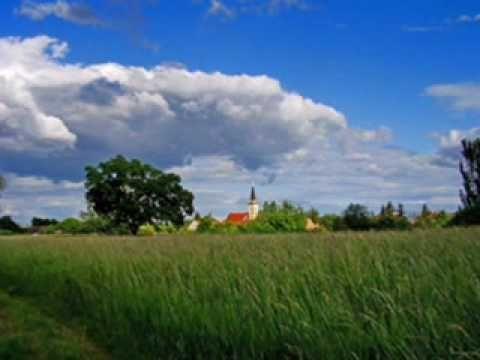 Máté Ottilia: Ez a Föld a Hazám