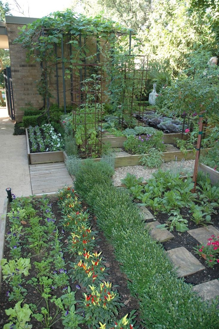 Vegetable garden in different levels. Notice how the flooring is planned to reap without having to walk around in the beds.