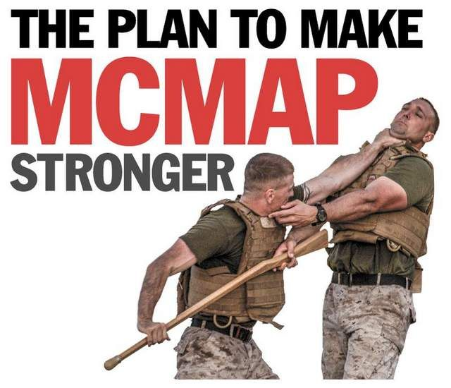 7 best images about MCMAP on Pinterest   Ladder, Belt and ...