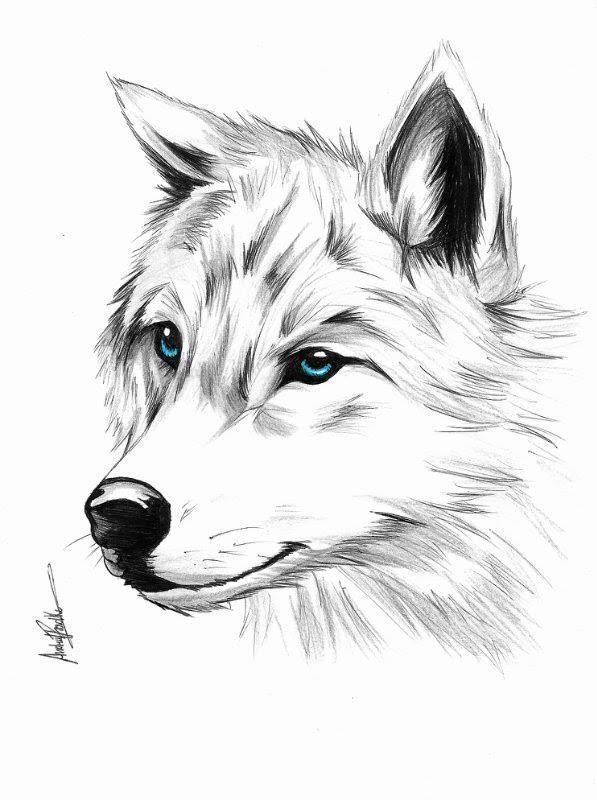 Картинки волка эскиз