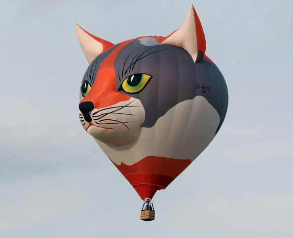 A cat ballon on the air at the Warsteiner International Hot Air Balloon Show in the Arnsberger Forest National Park on September 2, 2011 near Warstein, Germany. Approximately 200 hot air balloons are scheduled to take part in the nine-day event sponsored by the Warsteiner brewery on September 2, 2011 in Warstein, Germany.