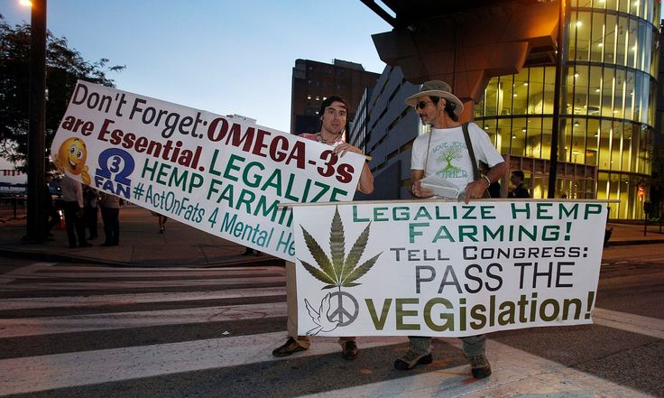 Ohio voters to decide on marijuana legalization in November election  Measure to legalize recreational and medical marijuana – and allow only 10 growers to sell it – collects enough signatures to appear on ballot.  (photo caption)  Legalize marijuana protesters gather outside Quicken Loans Arena before the Republican presidential debate at Quicken Loans Arena in Cleveland last week. Photograph: David Maxwell/EPA