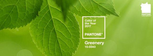l'essenziale visibile agli occhi: Colore dell'anno 2017, parliamo di verde!