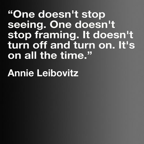 Photography: Famous Quotes, Fun Recipe, The Artists, True Words, Annie Leibovitz, Photo Quotes, Cameras Lens, A Frames, Eye