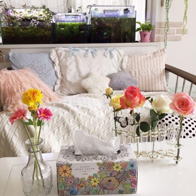 konomiさんの、蝶々,ソファ,木製家具,ストライプ,春,フランフラン,クッションカバー,お花,ガーリー,お花のある暮らし,ピンク,ネピア大人の鼻セレブ,お部屋にFIT,塗り絵ができるティッシュ,リビング,のお部屋写真