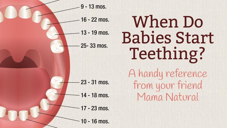 When do babies start teething? Find out when you'll see baby's first tooth—and when you can expect all the other teeth too—in our baby teething chart.