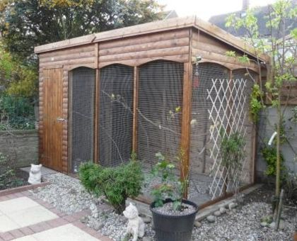 The 22 best images about Aviary Ideas on Pinterest