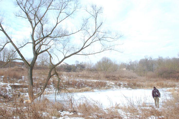 Zimowy spacer nad Wartą.