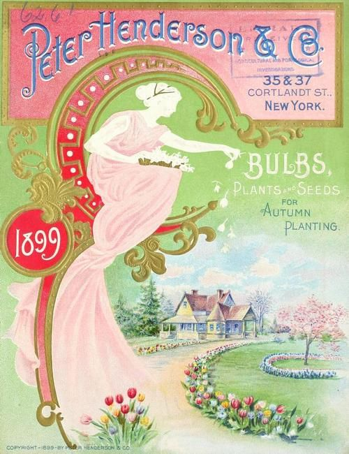Peter Henderson & Co. Bulbs, Plants & Seeds For Autumn Planting (1899)