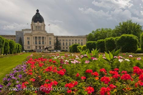 Queen Elizabeth II Gardens Regina Legislative Building: The grounds of the Legislative Building in the City of Regina in Saskatchewan, Canada is adorned with the vibrant colors of the blossoming flowers in the Queen Elizabeth II Gardens. The Queen Elizabeth II Gardens outside the Legislative Building in the City of Regina, Saskatchewan surround the statue which was placed on the grounds in the Queen's honor during the 2005 Centennial Celebrations. The trees are delicately shaped while a…