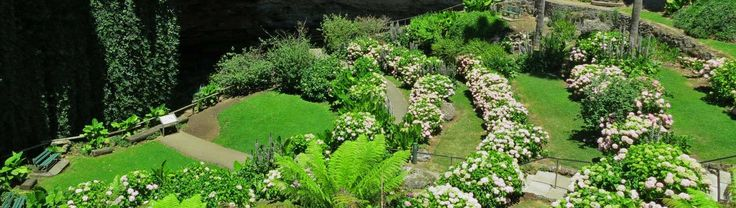 The Umpherston Sinkhole (or the Sunken Garden) is one of the most spectacular gardens located in the Mount Gambier region.
