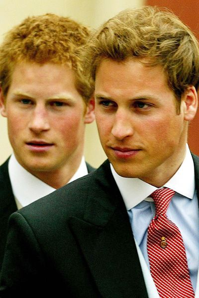 Who is the hotter prince: William or Harry?