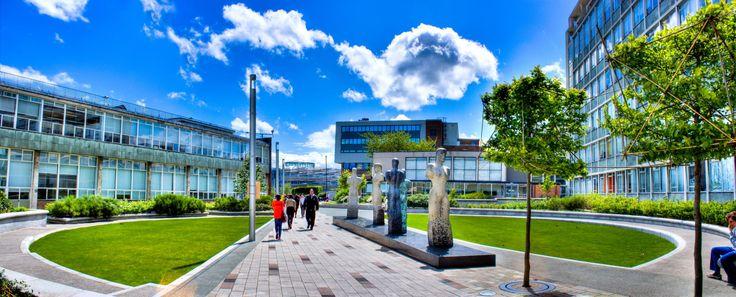 Ellison Quad in Summer | Northumbria University | by Fatima Hussain