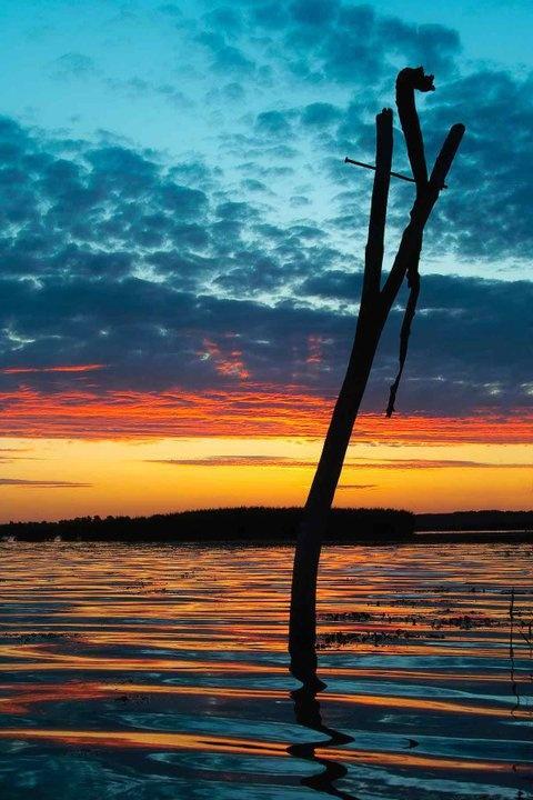 Lake Tisza harmony